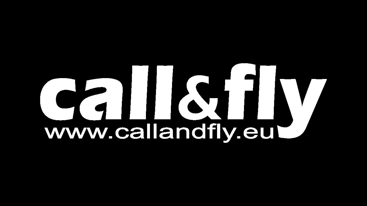 Call&Fly logo